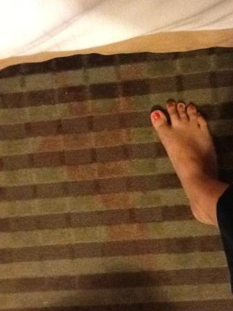 Holiday Inn Express Tell City: Stain at foot of bed