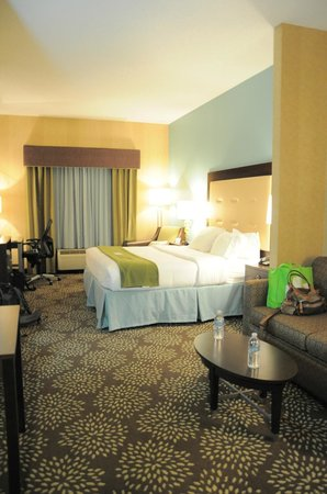 Holiday Inn Express Hotel & Suites Dillsboro: Suite