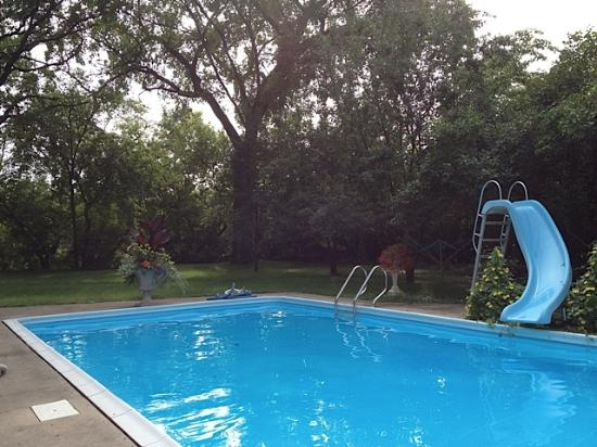 Beechmount Bed and Breakfast: Backyard pool