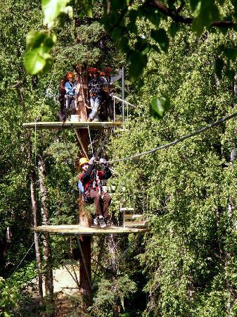 "Denali Zipline Tours: ""Talkeetna Dual Platform"" Views of Denali!"