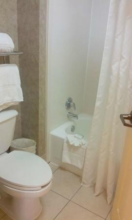 Homewood Suites by Hilton Houston - Clear Lake: baño