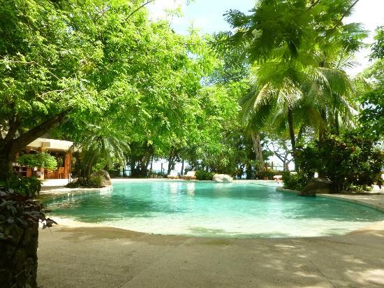 Hotel Capitan Suizo: jardín y piscina