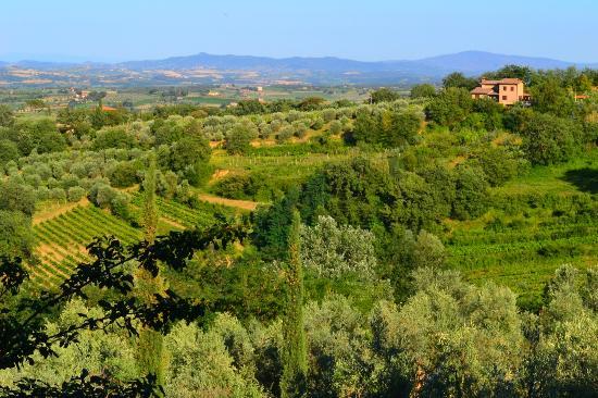 Villa Cicolina: view from Il Balcone's balcony