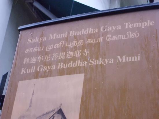 Temple of 1,000 Lights (Sakya Muni Buddha Gaya) : 千燈寺院