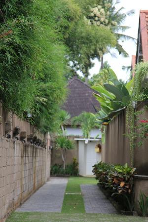 The Lodek Villas: walk way to Villas