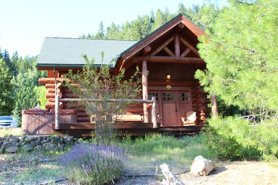 River Dance Lodge : our cabin