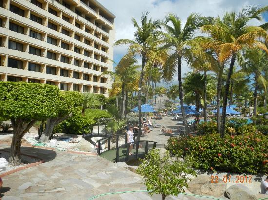 Occidental Grand Aruba All Inclusive Resort : Beaucoup de vent !