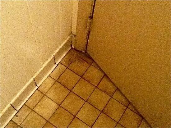 Oak Grove Motel: Dirty behind Bathroom door