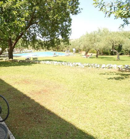 Masseria degli Ulivi: piscina