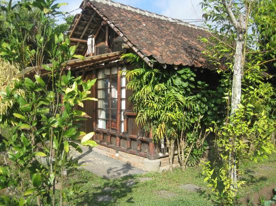 de Daunan Home and Garden Guest House: room next to us