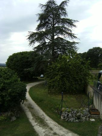 Girolles les forges : Blick in den Garten