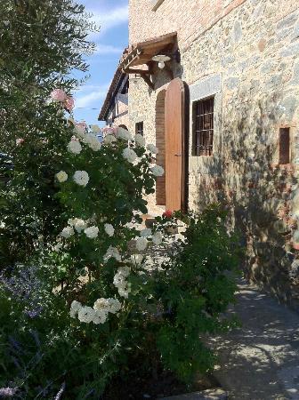 Villa Toscana La Mucchia: Lovely gardens