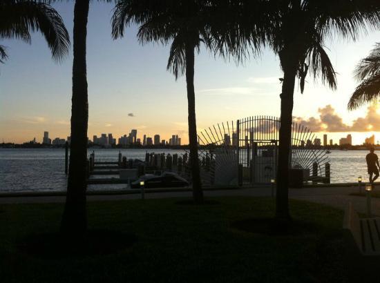 Flamingo South Beach / Calico Apartments: Vue