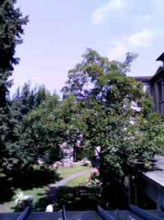 Hostellerie Saint-Antoine : 窓からの眺め
