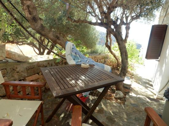 Villa Olga - Studios & Villas : terrasse