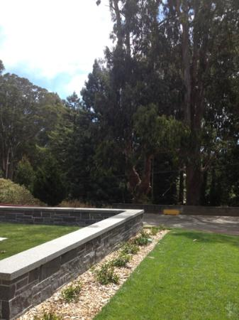 Inn at the Presidio: view from the fire pit area