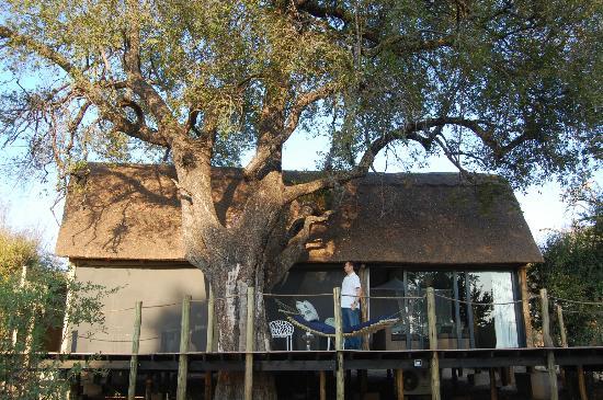 Victoria Falls River Lodge - Zambezi Crescent: Tent
