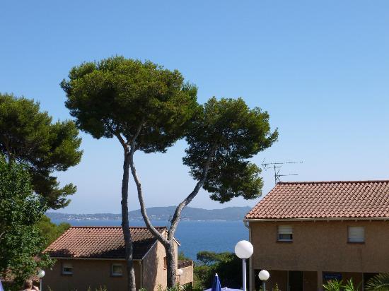 Carqueiranne, France: vu de la piscine