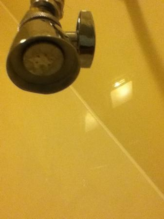 Americas Best Value Inn & Suites - Houston/Northwest: mold on shower head