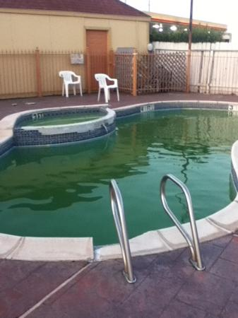 Americas Best Value Inn & Suites - Houston/Northwest: pool is not supposed to be green
