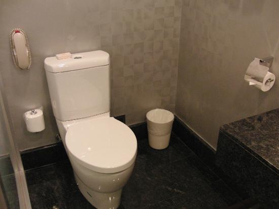 แอร์ไลน์ อินน์: トイレ