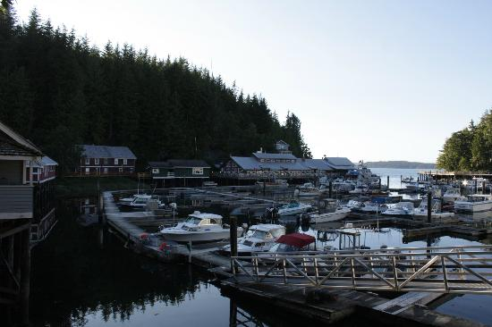 Telegraph Cove Resort: The harbour with cabin 19