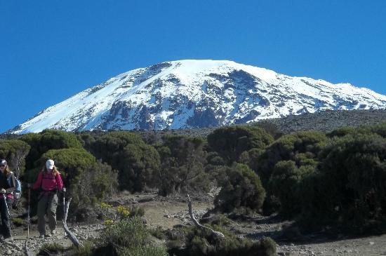 Kilimanjaro National  Park, Tanzania: Kili
