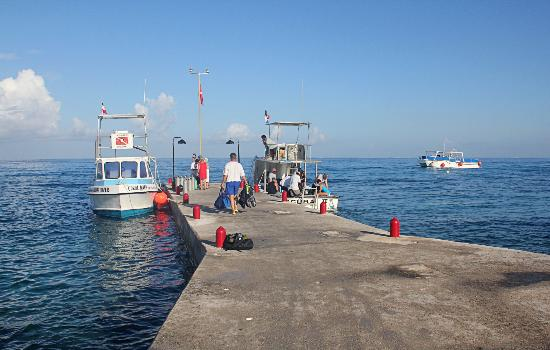 Scuba Club Cozumel: House Dock