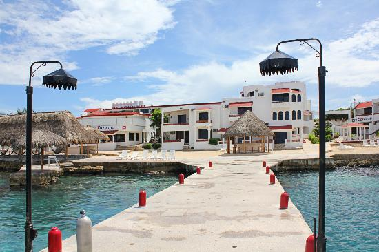 Scuba Club Cozumel: Grounds From the Dock