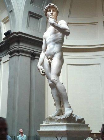 正面のダビデ像。あまり見ない角...