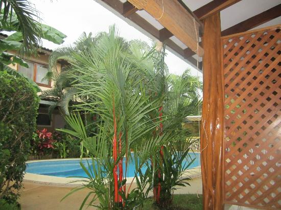 Hotel Domus Kahuna : View from the patio
