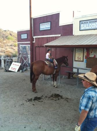 Arizona Horses (Ponderosa Stables and South Mountain Stables): first time