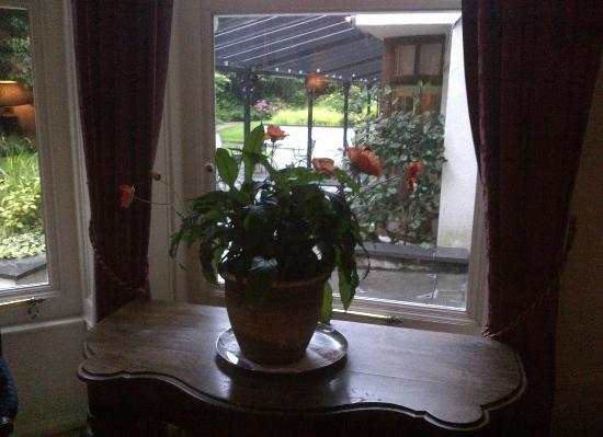 The Ardilaun Hotel: Scorcio del giardino da una sala
