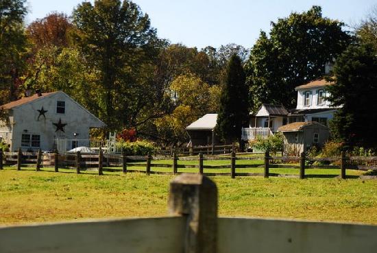 Equestrian Farmhouse B & B