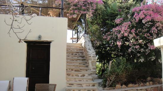 Elia Traditional Guesthouse: Escalera a la terraza