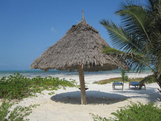 Hakuna Majiwe Beach Lodge: spazietto e sdraio private