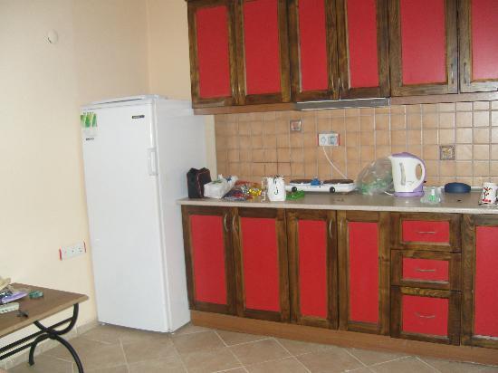Arya Aparthotel: the great fridge lol kitchen area