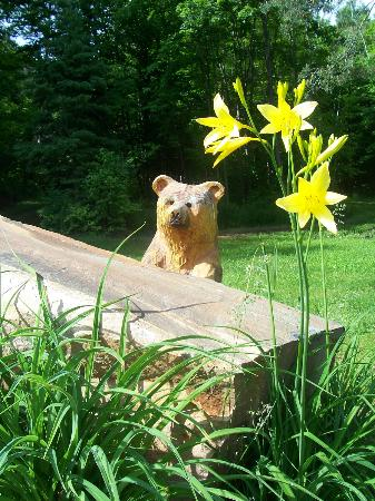 Dwight Village Motel: Little bear in the yard