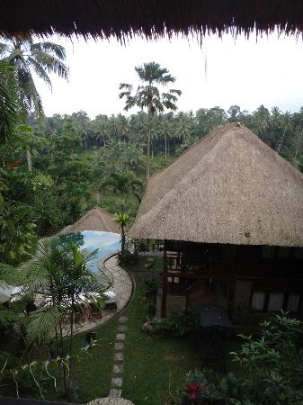 Graha Moding Villas: View from balcony