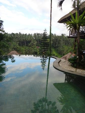 Graha Moding Villas: Pool view