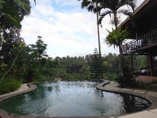 Graha Moding Villas: Infinite pool view
