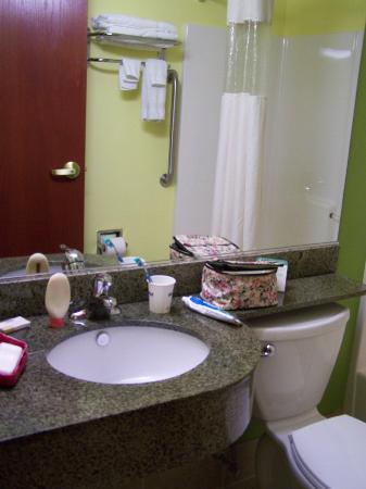 Microtel Inn & Suites by Wyndham Johnstown: Bathroom.