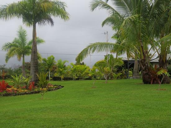 Island Goode's: View from front yard, Hilo bay in distance