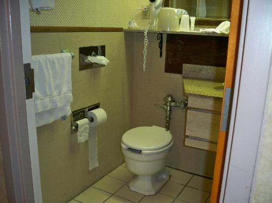 Best Western Watertown Fort Drum: check out the toilet