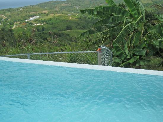 360 Vieques: Fence by edge of pool