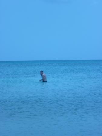 Aruba Surfside Marina: beach