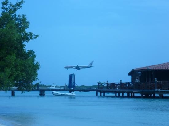 Aruba Surfside Marina: airplane landing