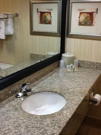 Holiday Inn Solomons Conference Center and Marina : Bathroon vanity
