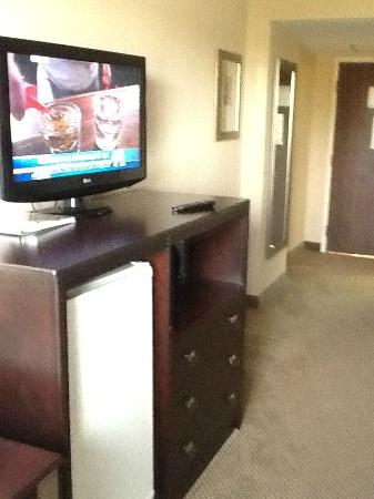 Holiday Inn Solomons Conference Center and Marina: Nice television, fridge, and microwave
