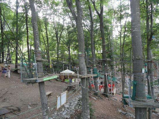 Parco Avventura Bergamo: Foto 1